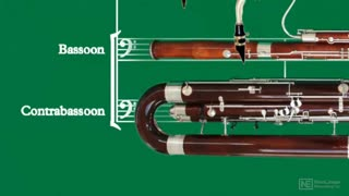 16. Introduction to the Bassoon