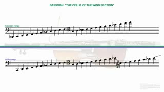 17. Bassoon: Unique Voice and Potential