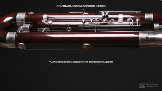 20. Contrabassoon: Orchestral Role