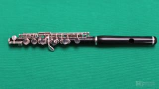 5. Introduction to the Piccolo