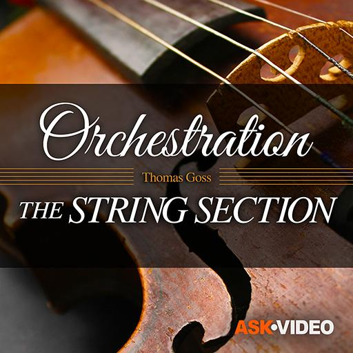 Orchestration 101: The String Section