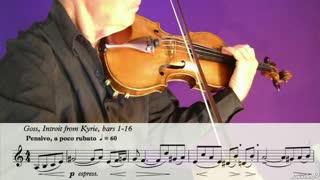 22. The Violin's Flexibility