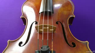 27. Viola: Strengths and Limitations
