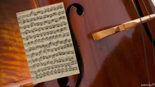 33. Solo Cello