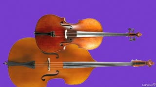 36. Double Bass: Orchestral Role