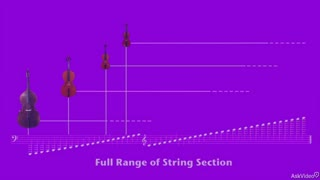 38. Score Reading the String Section