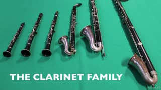 6. The Clarinet Family