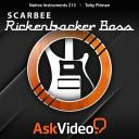 Native Instruments 213 - Scarbee Rickenbacker Bass